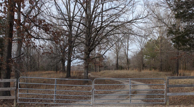 Gate - Entranceresized